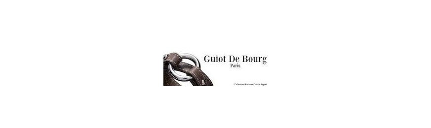 Guiot De Bourg