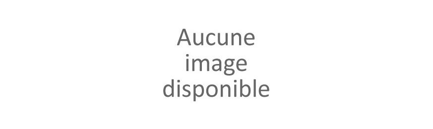 Chaînes de Cheville